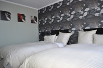 16 havelock bed and breakfast new plymouth                         taranaki